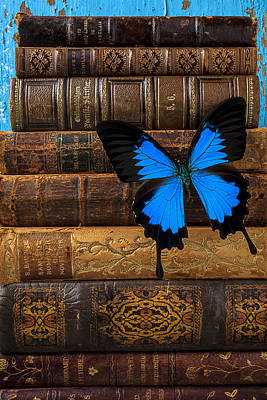 Butterfly And Old Books Art Print by Garry Gay