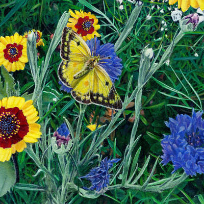 Garden Scene Painting - Butterfly And Wildflowers Spring Floral Garden Floral In Green And Yellow - Square Format Image by Walt Curlee