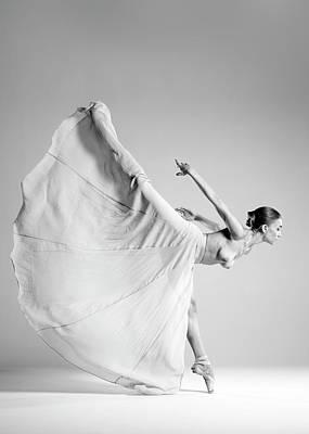 Stretched Photograph - Butterfly by Arkadiusz Branicki
