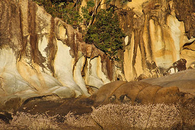 Butterfly Bay Rock Formations Art Print