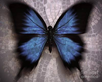 Digital Digital Art - Butterfly Becomes The Mosaic  by Elizabeth McTaggart
