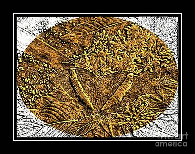 Brass Etching Photograph - Butterfly - Brass Etching by Barbara Griffin