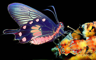 Butterfly Brushed In Water And Wind Art Print by Wernher Krutein