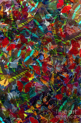Photograph - Butterfly Collage Red by Robert Meanor