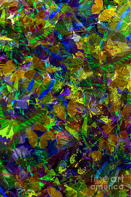 Butterflys Photograph - Butterfly Collage Yellow by Robert Meanor