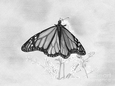 Butterfly Art Print by Denise Deiloh