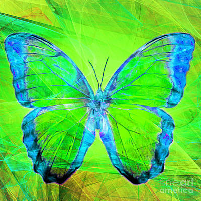 Photograph - Butterfly Dsc2969m88 Square by Wingsdomain Art and Photography