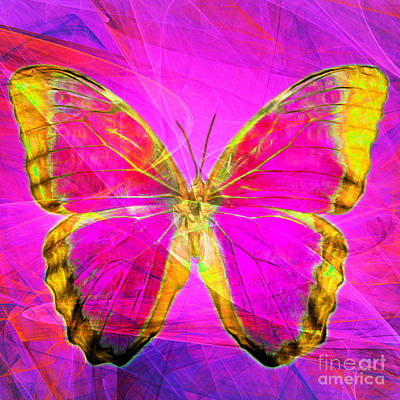 Butter Fly Photograph - Butterfly Dsc2969p120 Square by Wingsdomain Art and Photography