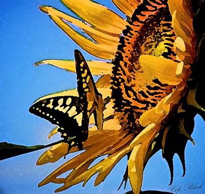 Faa Artist Drawing - Butterfly Effect by Cole Black