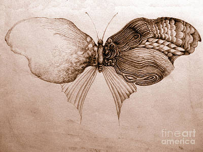 Butterfly For Jeffrey Art Print