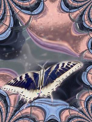 Photograph - Butterfly Fractal by Michaela Kraemer