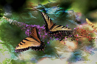 Manipulation Photograph - Butterfly Friends by EricaMaxine  Price
