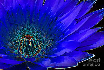 Digital Art - Butterfly Garden 11 - Water Lily by E B Schmidt