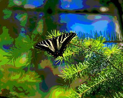 Photograph - Butterfly In A Spokane Pine by Ben Upham III
