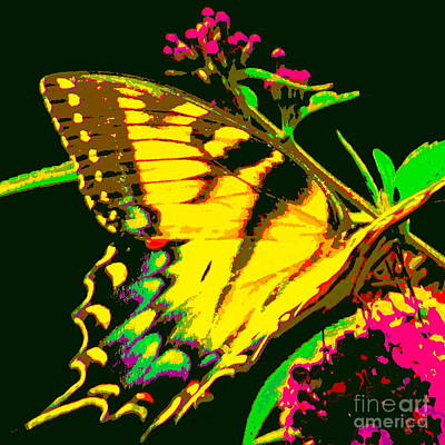 Photograph - Butterfly  by Jean Wright