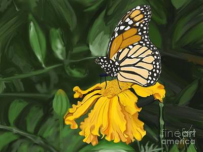 Ipad Art Drawing - Butterfly by Lisa Estep