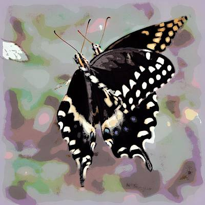 Photograph - Butterfly Love by Sheri McLeroy