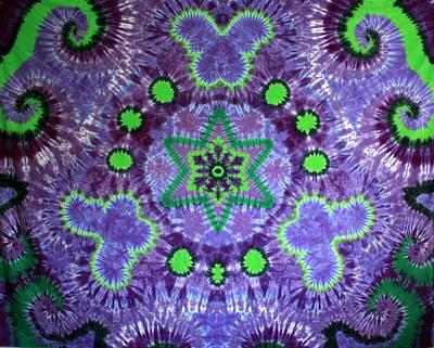 Butterfly Mandala Art Print by Carl McClellan