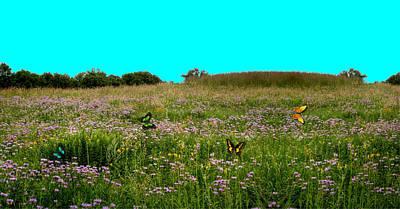Butterfly Meadow Art Print by Larry Trupp
