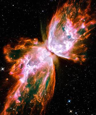 Photograph - Butterfly Nebula by Benjamin Yeager