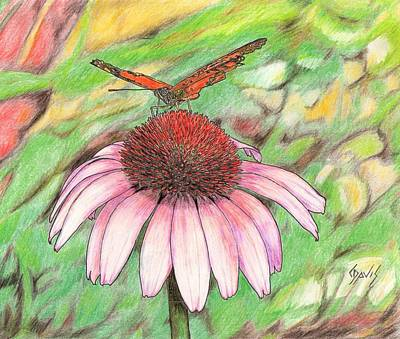 Drawing - Butterfly On A Cone Flower by Lew Davis