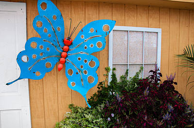 Photograph - Butterfly On The Wall by Gene Sherrill
