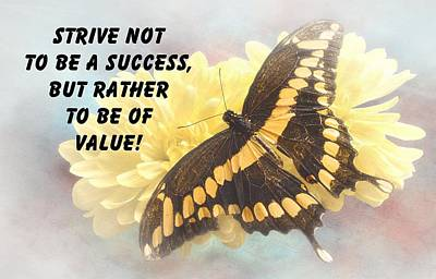 Butterfly Quote Print by Rudy Umans