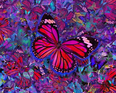 Euphoria Photograph - Butterfly Red Explosion by Alixandra Mullins