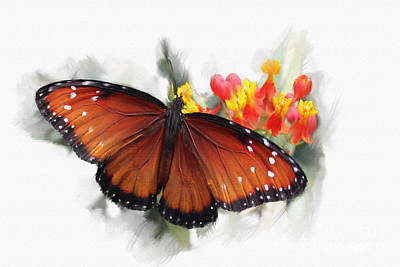 Butterfly Art Print by Roger Lighterness