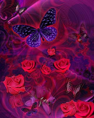 Alixandra Mullins Photograph - Butterfly Rose by Alixandra Mullins