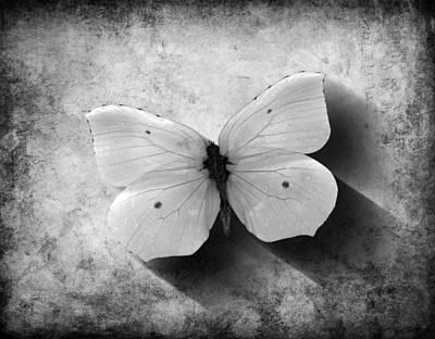 Digital Art - Butterfly 4 by Steve Ball