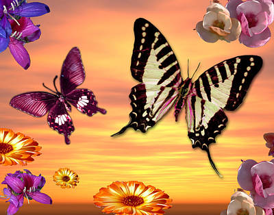 Butterfly Sunset Art Print by Alixandra Mullins