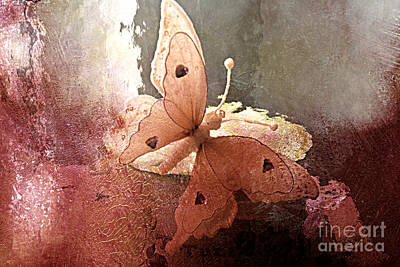 Digital Paint Photograph - Butterfly Surreal Fantasy Painterly Impressionistic Sepia Abstract Butterfly  by Kathy Fornal