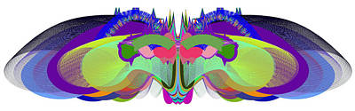 Digital Art - Butterfly - Ticker Symbol Csco by Stephen Coenen