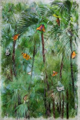 Photograph - Butterfly Tree by Carol Kinkead