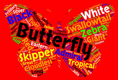 Butterfly Word Cloud Art Print by Bruce Nutting