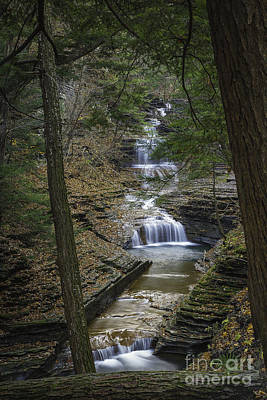 Buttermilk Falls In Autumn IIi Art Print by Michele Steffey