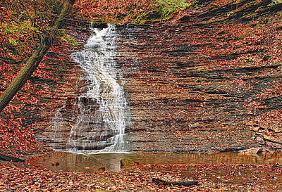 Buttermilk Waterfall Art Print by Marcia Colelli