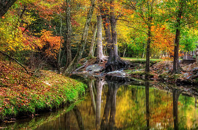 Photograph - Butternut Creek In Fall by Greg Mimbs