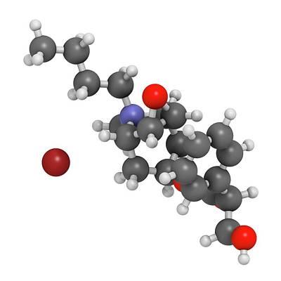 Pharmacology Photograph - Butylscopolamine Drug Molecule by Molekuul