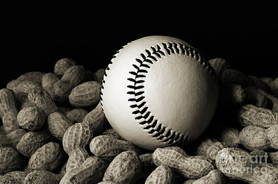 Andee Design White Photograph - Buy Me Some Peanuts - Baseball - Nuts - Snack - Sport - B W by Andee Design