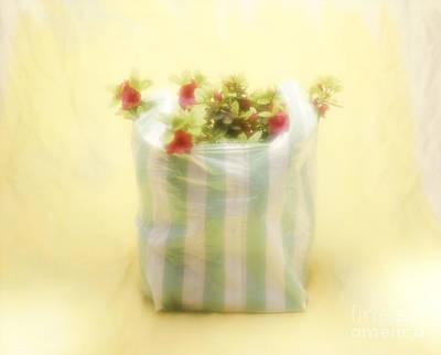 Photograph - Buying Flowering Plants by Hans Janssen