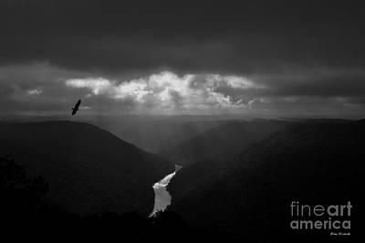 Photograph - Buzzard Flying In Gorge by Dan Friend