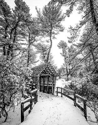 Print featuring the photograph Bw Covered Bridge In The Snow by Steve Zimic