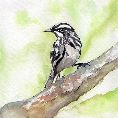 Painting - Bw Warbler by Sean Parnell