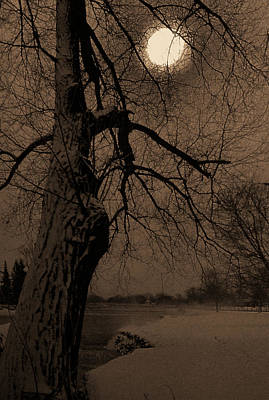 Photograph - By Moonlight by Jim Vance