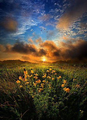 Fall Leaves Photograph - By The Dawns Early Light by Phil Koch