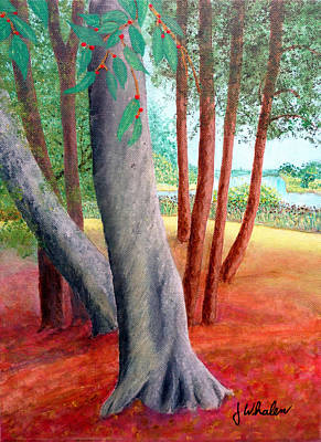 By The Lafayette River Art Print