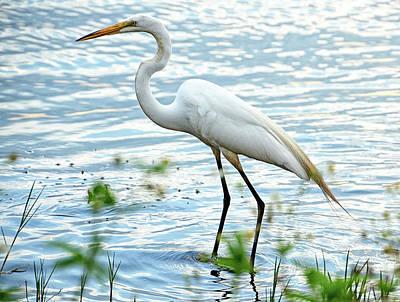 Egret Digital Art - By The Lake Egret by Bruce Nawrocke
