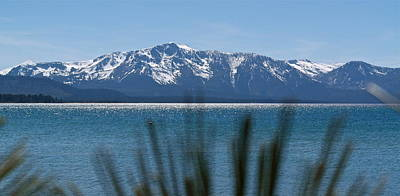 Photograph - By The Shores Of Lake Tahoe by Michele Myers